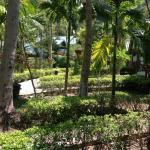 Foto de Krabi Mountain View Resort