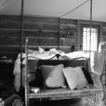 Three Bear Holler Cabin Rentals의 사진