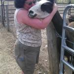 Sandy (the owner) and her one beloved llama