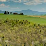 Foto di We Drive You Tuscany