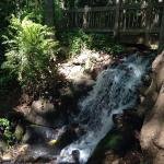 Waterfall at hatcher
