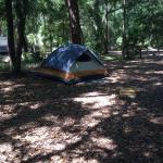 Jekyll Island Campground Photo