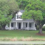nice plantation view