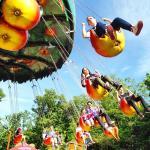 Apple chain carousel
