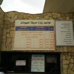 The zoo timing in Arabic