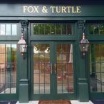 Fox & Turtle
