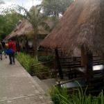 thatch-roofed cottages