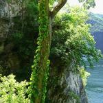 El sendiero di Gandria a Lugano