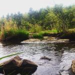 River Pines Trail Segment, Wisconsin River