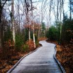 Moses Creek Trail Segment