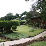 Hotellträdgården