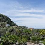 Coast/hill view