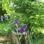 Espaces verts fleuris