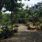 Poorly maintained gardens