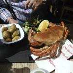 Crab for lunch