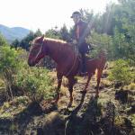 My horse Gringo!