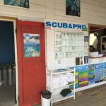 Seagrape dive shop
