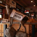 The mascot of the restaurant : The Coyote