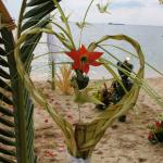 Beach Wedding Event
