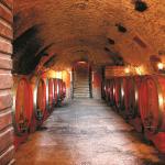 winery Bixio Poderi(Valpolicella)