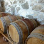 Zinfandel Origin Wine Tour