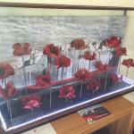 Poppy display :)