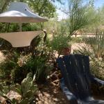 The desert garden
