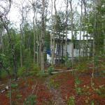 Ridgetop Cabins Foto