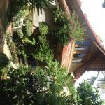 Foto de Blue Star - Bali