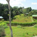 I bungalow visti dalla zona comune