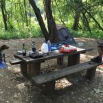 Imagen de Big Sur Campground & Cabins