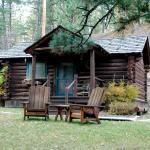 Willows Cabin