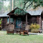 Willows Cabin