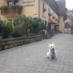 Mein Westie Knut direkt vor dem Hotel