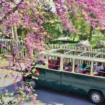 Cruising the MontjuicHill on BrightSide's open-top vans