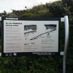 Read this before going down to the blowholes