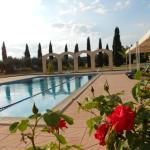Photo of Vega Hotel