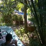 vue du bungalow