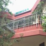 Mimoza Hamam Turkish Bath