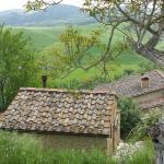 Photo de Azienda Agricola Agrimonia