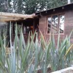 Photo de Cabanas en las Montanas Azules