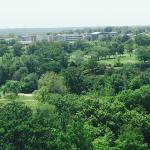 Hampton Inn & Suites St. Louis at Forest Park Photo