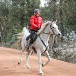 Equestrian trails at Stromlo