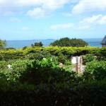 vue sur la mer - larges baies vitrees