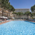 Hotel Oasis Park Vista de la piscina