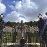 Dan Gardens Haifa Foto