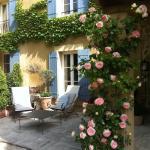 Magnifique rosier Ronsard