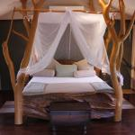 Luxury lodge tent / honeymoon suite