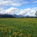 Alpengasthof zur Loisach Foto