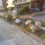 Landscape - miami pub Photo